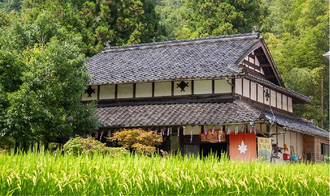 Local Cuisine Restaurant Momiji